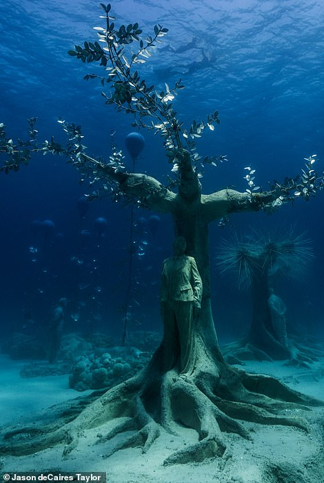 DeCaires Taylor describes the sculptures as 'active catalysts' in nurturing aquatic life and reefs