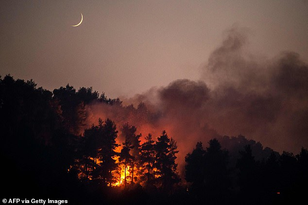 The Evia fire is one of more than 500 blazes that have broken out in just a few days across Greece, which is in the midst of its worst heatwave in 30 years, but is by far the most widespread and severe