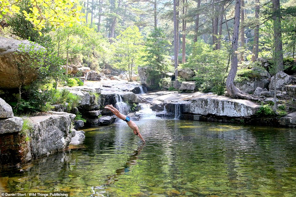 CASCADE D'AITONE, EVISA, CORSICA: A big stunning mountain pool with a waterfall and surrounded by woodland, notes Daniel. Co-ordinates: 42.2679, 8.8309