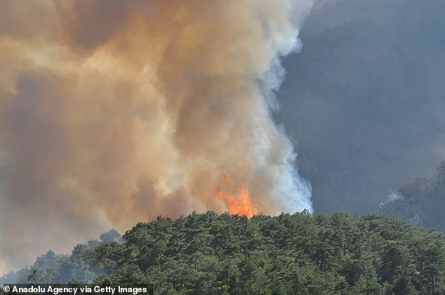 TURKEY: At least eight people and countless animals died and thousands of residents have had to flee fierce blazes