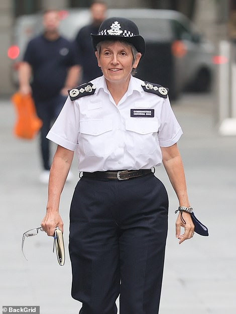 Dame Cressida Dick said a third review into the case is under way - but insisted no Metropolitan Police investigation is taking place.