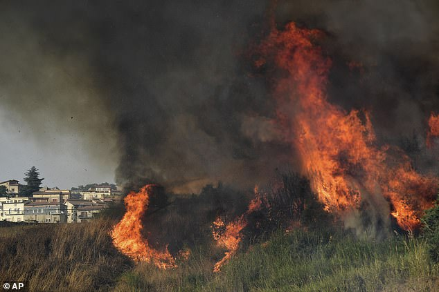 Regional authorities in Sicily have declared a state of emergency as a result of the fires, while 50 voluntary fire-fighting teams from around Italy have flown in to help battle the blazes