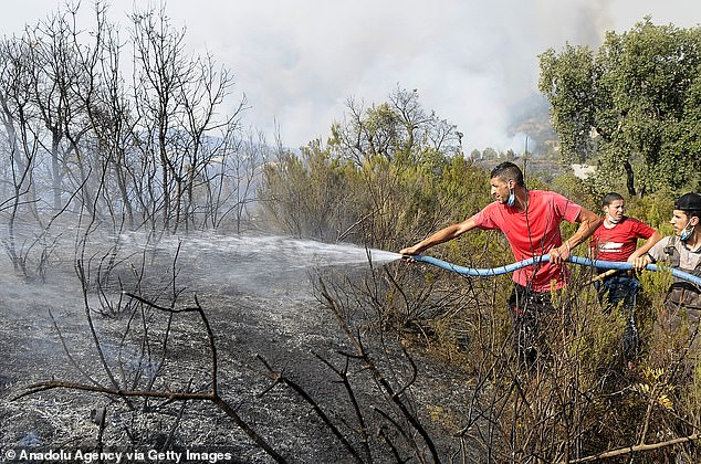 Extinguishing works continue for the wildfire at Beni Douala town in Tizi Ouzou Province in northern Algeria