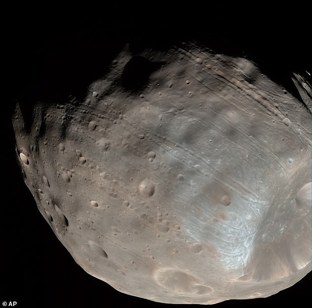 Scientistsare set to launch the Martian Moons eXploration (MMX) mission in 2024, which will collect samples from the Phobos (pictured) surface and return them to Earth five years later