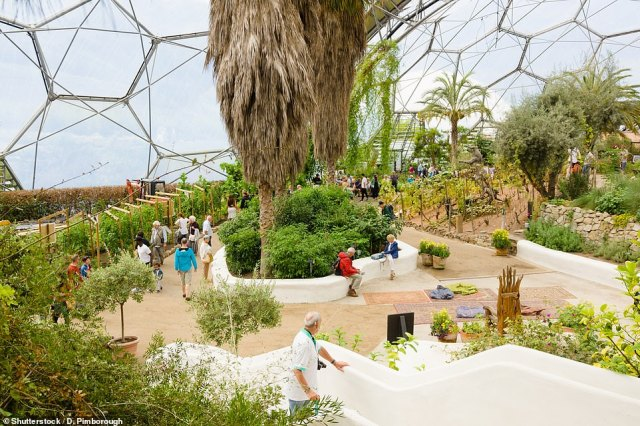 Toby spent a day at the tropical gardens of the Eden Project, which is one of Cornwall's tourist hotspots