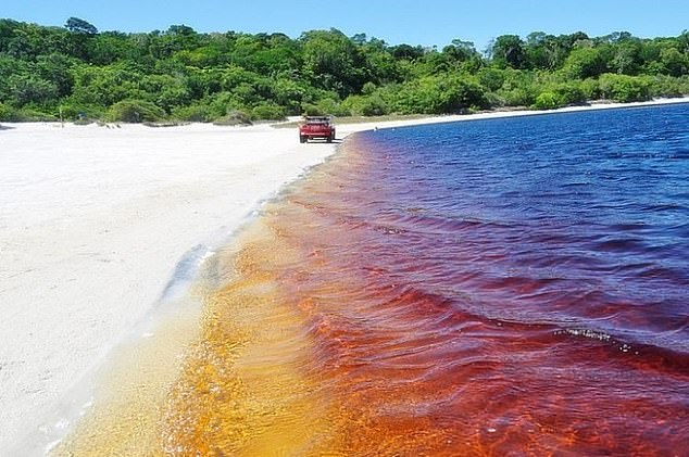 Araraquara's dark brown waters come from a high concentration of iodine and iron, combined with pigment from tree roots