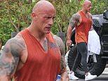 Dwayne Johnson flexes bulging biceps after grueling work out in Los Angeles