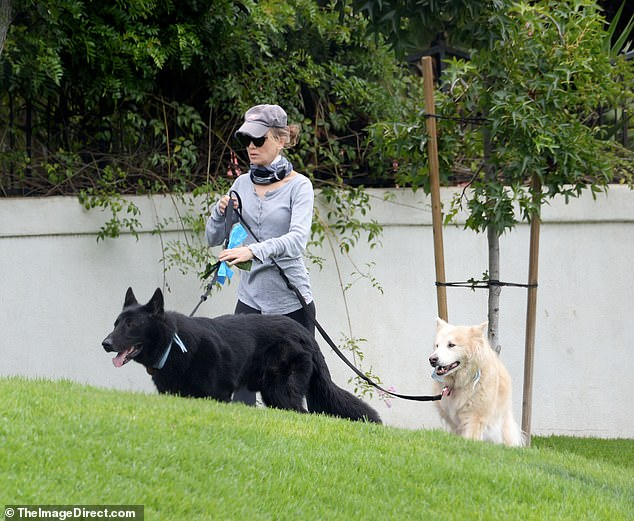Man's best friend: The Bridget Jones's Diary star walked her furry friends through the park
