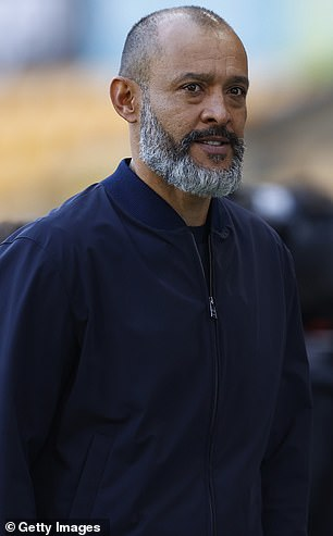 Nuno helped nurture Traore during his time at Molineux