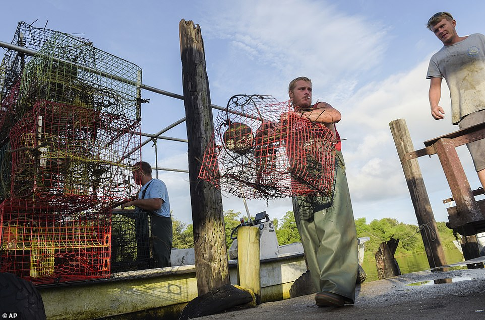 Commercial crabbers in St. Bernard are pictured collecting crab traps on Saturday before the flood wall closes and Hurricane Ida meets the Louisiana coast on Sunday