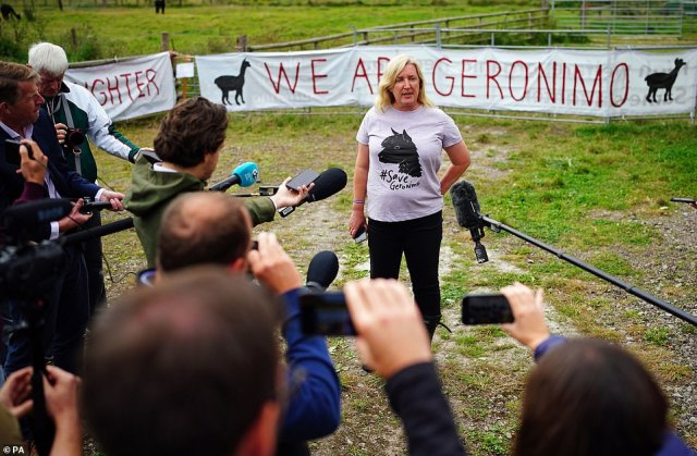 Helen Macdonald, the owner of Geronimo the alpaca, at Shepherds Close Farm in Wooton Under Edge, Gloucestershire, talks to the media after the animal was taken away on a trailer to an undisclosed location