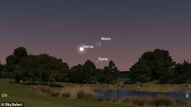 The cosmos is set to put on a stunning display tonight when Venus, Earth's moon and the bluish star Spica align in a triangle formation