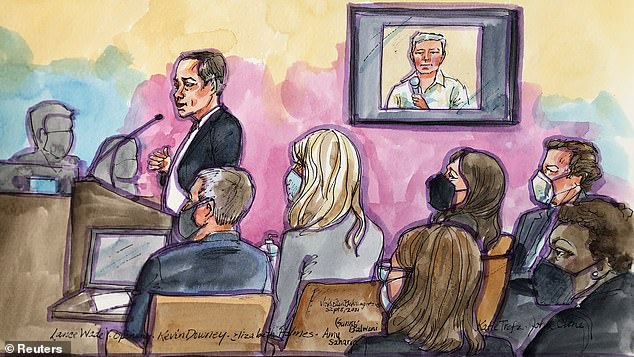 Holmes's defence lawyer, Lance Wade, says she is guilty of nothing more than being an ambitious, perhaps naïve young woman who set out to 'change the world'