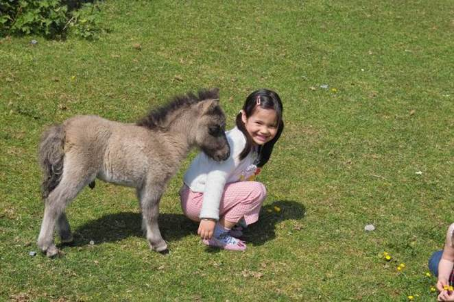 FEELING A LITTLE HORSE: Emma seems happy to have made a new equine friend while on holiday aged about seven