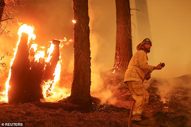 The extreme temperatures this summer have resulted in record wildfires in California. Picture: the Dixie fire, which is now the second-largest in state history, continues to burn out of control