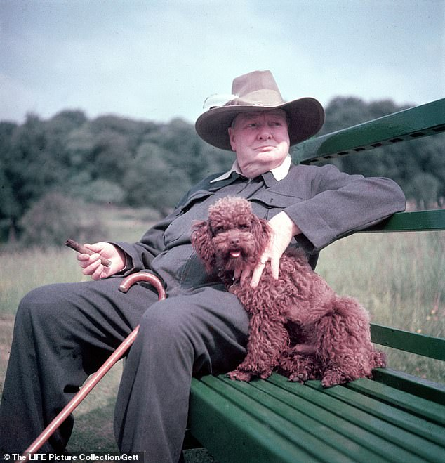 Winston Churchill, dubbed fat and wicked by CHIPS CHANNON, sits on a bench with his pet poodle