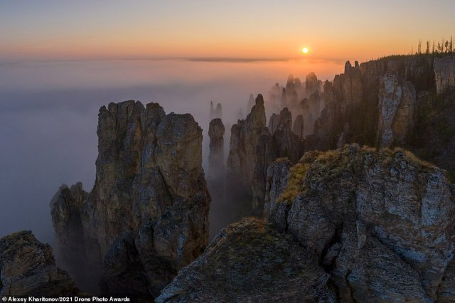 Above is Alexey Kharitonov's stunning commended Nature category photograph. It was snappedalong the Sinyaya River in the Republic of Sakha, Russia. 'For tens of kilometres along its banks, majestic groups of rocks made of Cambrian limestone rise,' the photographer says, adding: 'It's one of my favourite places on the Earth. I travelled here several times, and the summer of 2020 was lucky to make some unique aerial photos, flying my drone above the fog'