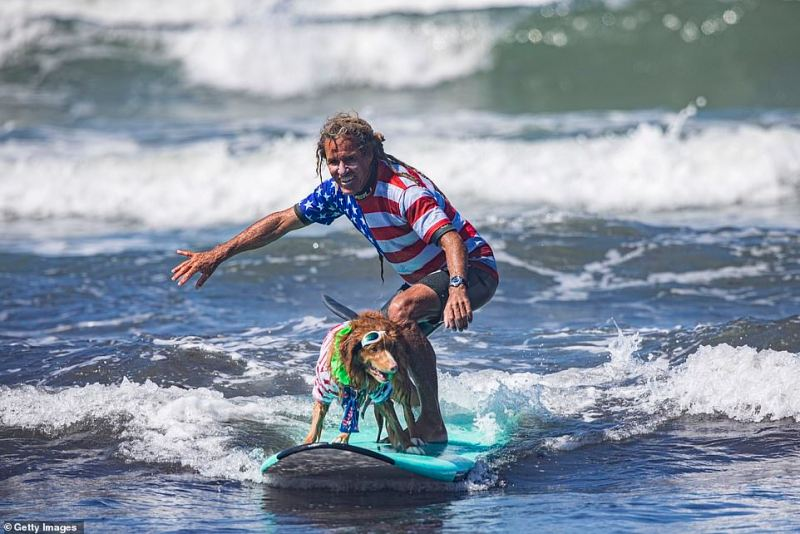 Michael Willis and his surfing partner Bridget compete at the 16th Annual Surf Dog Surf-A-Thon at Del Mar Dog Beach