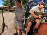 Nick 'Honey Badger' OUTRUNS and catches a giant lizard which had broken into his chicken pen