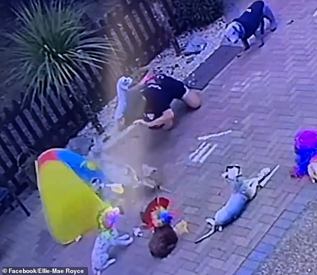 The man pushed the dog over (pictured), put his face into the salt and then smeared it across the floor before launching himself over the wall - and losing his charger in the process