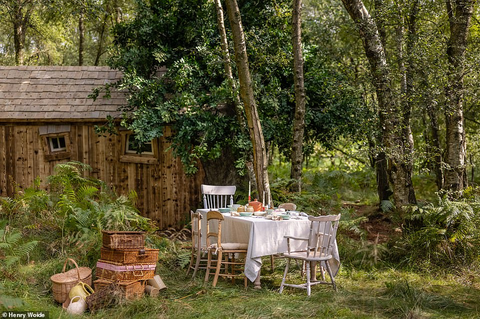 Locally sourced 'hunny-inspired' meals will be served in a delightful picnic area outside the 'Bearbnb', pictured above