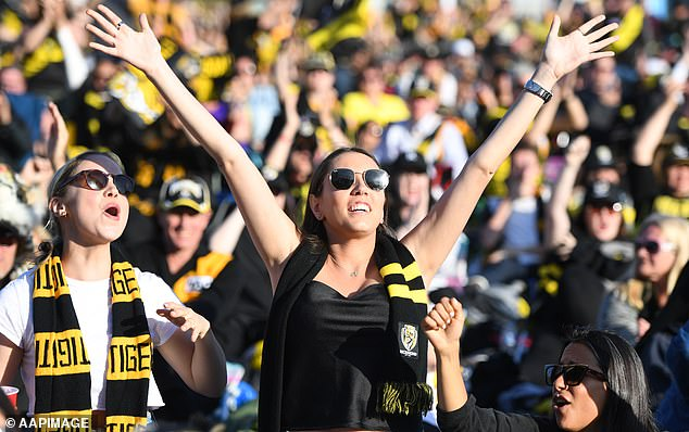 Footy fans won't see the AFL grand final in Melbourne this year - but they may be able to attend BBQ's in small numbers if they are double vaccinated (pictured, Richmond fans after winning the flag)