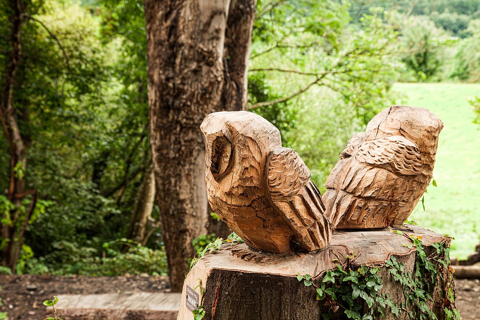 Pictured is one of the wood sculptures that's part of the woodland trail at Bassenthwaite Lake Station. Di and Simon have planted more than 300 trees, plants and shrubs around the station
