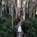 Australians visit 'enchanting' Paperback Forest Boardwalk in Agnes Water, Queensland💥👩💥💥👩💥