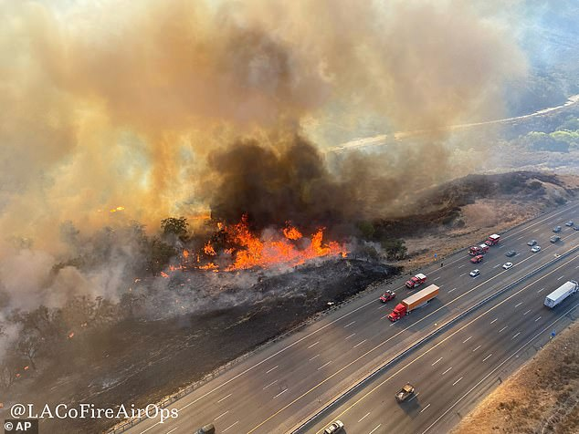Researchers say a rise in temperature at the end of the Permian has much of a 'parallel to today', coinciding with a massive increase in wildfires, which is currently happening in California (pictured)