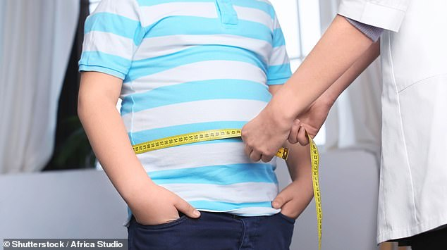 Obese people have a higher risk of heart disease, joint problems, type 2 diabetes and other conditions (file photo)