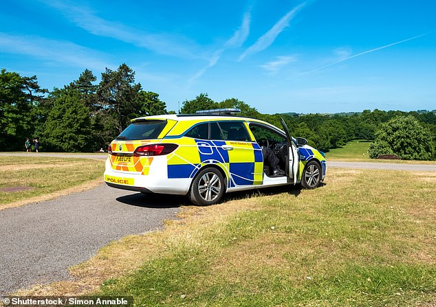 Two Surrey Police officers ignored call-outs to a burglary and a hospital to have sex in a squad car while on duty, a disciplinary panel has heard (stock image)