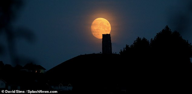 """The September full moon, known as the """"Harvest Moon"""", hangs over Glastonbury Tor as the autumn haze gathers around.  It reaches its peak tonight at 19:23 BST"""