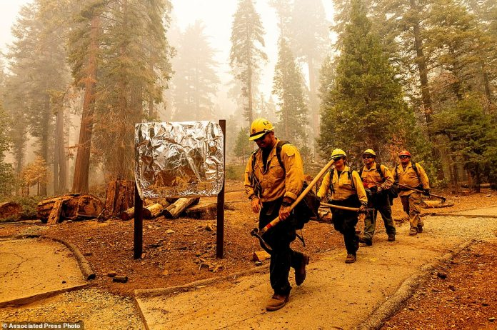 Firefighters pass a sign wrapped in fire-resistant material while battling the Windy Fire