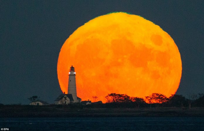 The Harvest Moon rises earlier, sets later and, in some very northern latitudes, such as Alaska, can remain full and bright for up to a week, often appearing larger as people see it closer to sunrise, as in Boston, US. with this image.