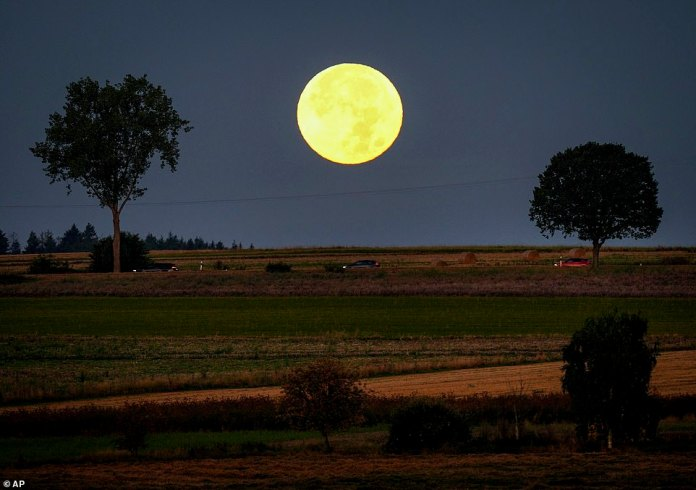 The full moon is located behind the hills of the Taunus region near Wehrheim, Germany.  According to NASA, the light of the full moon closest to the equinox was used to extend its workday beyond sunset before the invention of electric light.