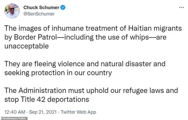 Senate Democratic Leader Chuck Schumer called the images 'inhumane' and called on the Biden administration to 'stop Title 42 deportations'