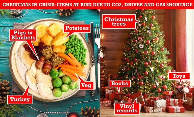 Supply issue threatens Christmas:The classic Christmas dinner could be decimated, with turkey, pigs in blankets, potatoes and brussel sprouts all at risk by ongoing supply and distributions issues, as well as a potential CO2 crisis. Meanwhile, toys, vinyl and books could also experience shortages - with experts even warning of Christmas trees not being available
