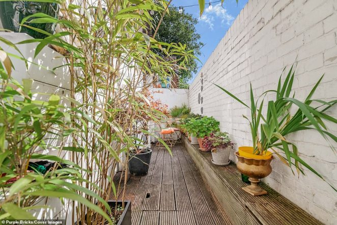 The property even has its own terraced garden- pictured here with various plants growing - a rarity in the city of London