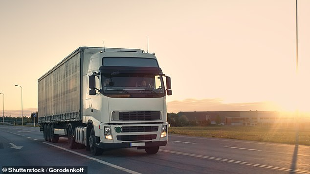 Lorry drivers can pick-up £78,000-per-year - more than double the £32,500 average for HGV drivers - under job vacancies being listed online. Library image