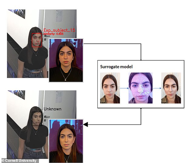 While the participant is in initially recognized by the FR system (top), when they apply adversarial makeup (bottom), the system fails to pick them out.