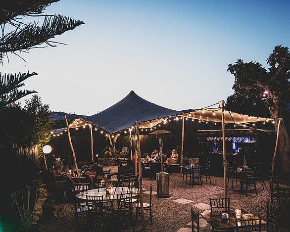 Enjoy a relaxed evening at Tapas Ibiza - a true hidden gem