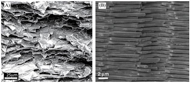 (a) The McGill University team's microstructure of the glass composite and (b) the microstructure of the nacre.  Note the brick wall-like arrangement of the nacre surface