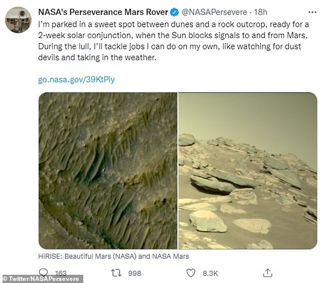 The Perseverance Twitter account revealed yesterday that the rover stood 'in a sweet spot between a dune and a rock, ready for a 2-week solar conjunction'