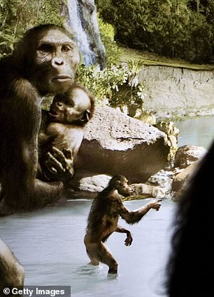Lucy was an adult female of the species Australopithecus afarensis found in Ethiopia and believed to have lived about 3.2 million years ago.