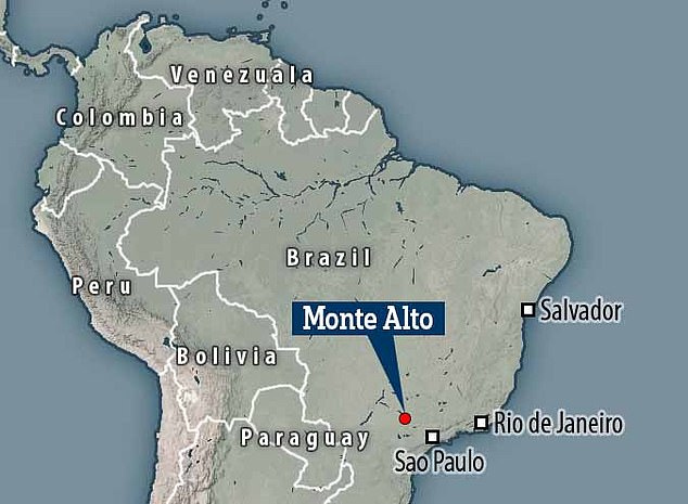 Monte Alto, in the state of So Paulo, is one of Brazil's richest sites for dinosaur discoveries