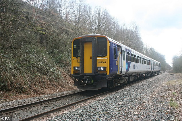 The leaves are currently cleared by 61 special trains, which deploy jets of high-pressure water to aid in braking, followed by a gel containing grains of sand and steel.