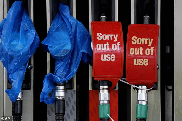 This comes amid the ongoing fuel crisis, which has seen petrol stations across the country grappling with shortages for the past fortnight.  Pictured: The fuel pump at a petrol station in London