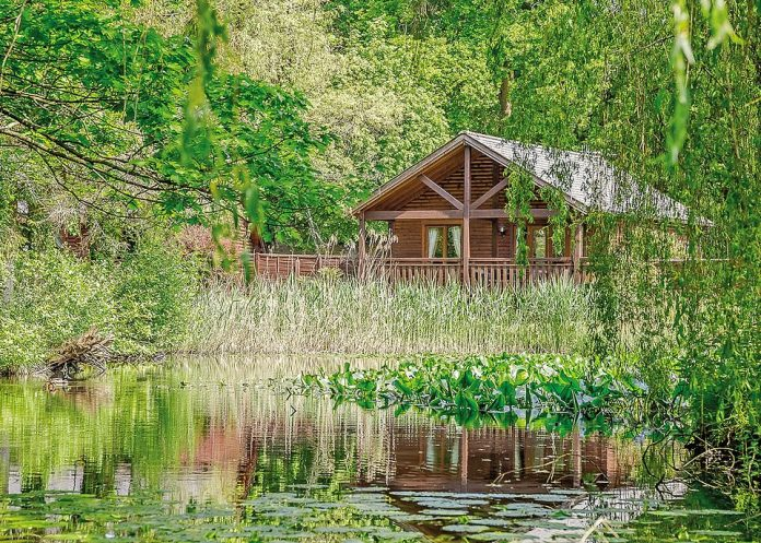 Falkner Watersedge Lodge (pictured) is one of several pet-friendly log cabins at the Tilford Woods Lodge Retreat