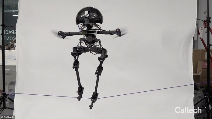 The LEO, a professional slackliner, is a cross between a drone and a robot, which can use two legs to traverse a thin wire before it flies back to the ground