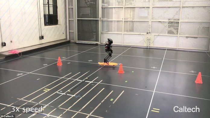 It was developed by engineers at the California Institute of Technology in Pasadena from parts found around the lab, including a two-legged robot and drone.